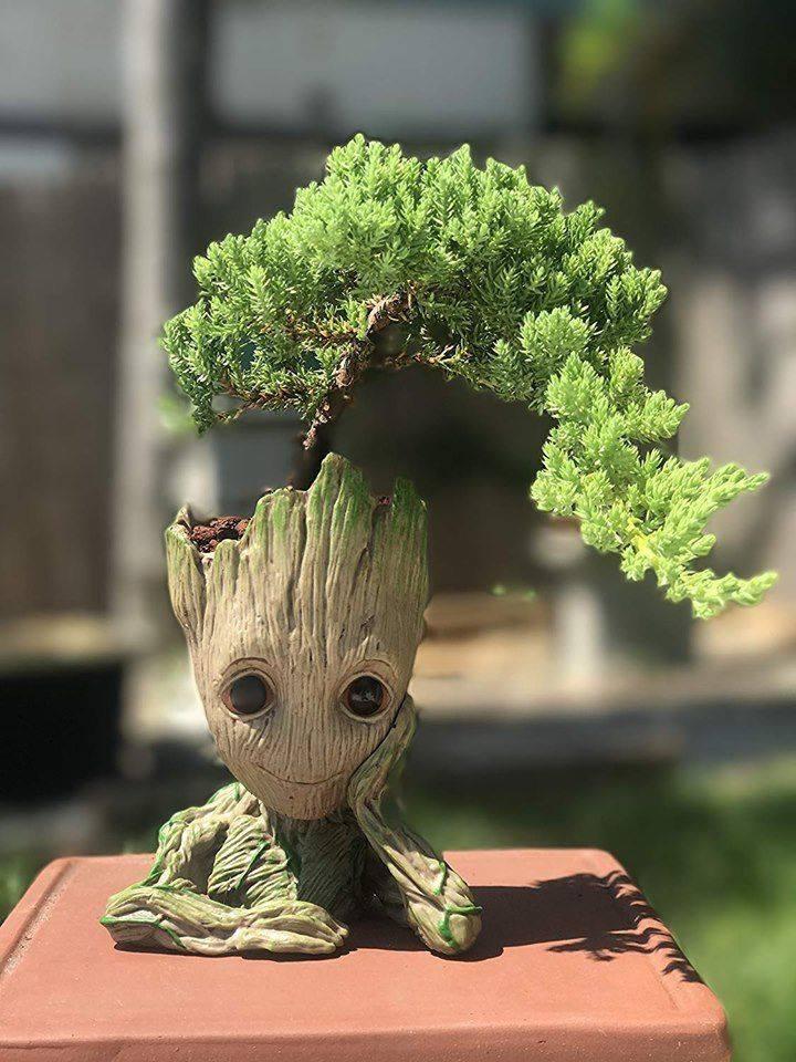 Cutest Baby Groot Flower Pot