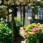 Blooms and beyond: The top gardening trends