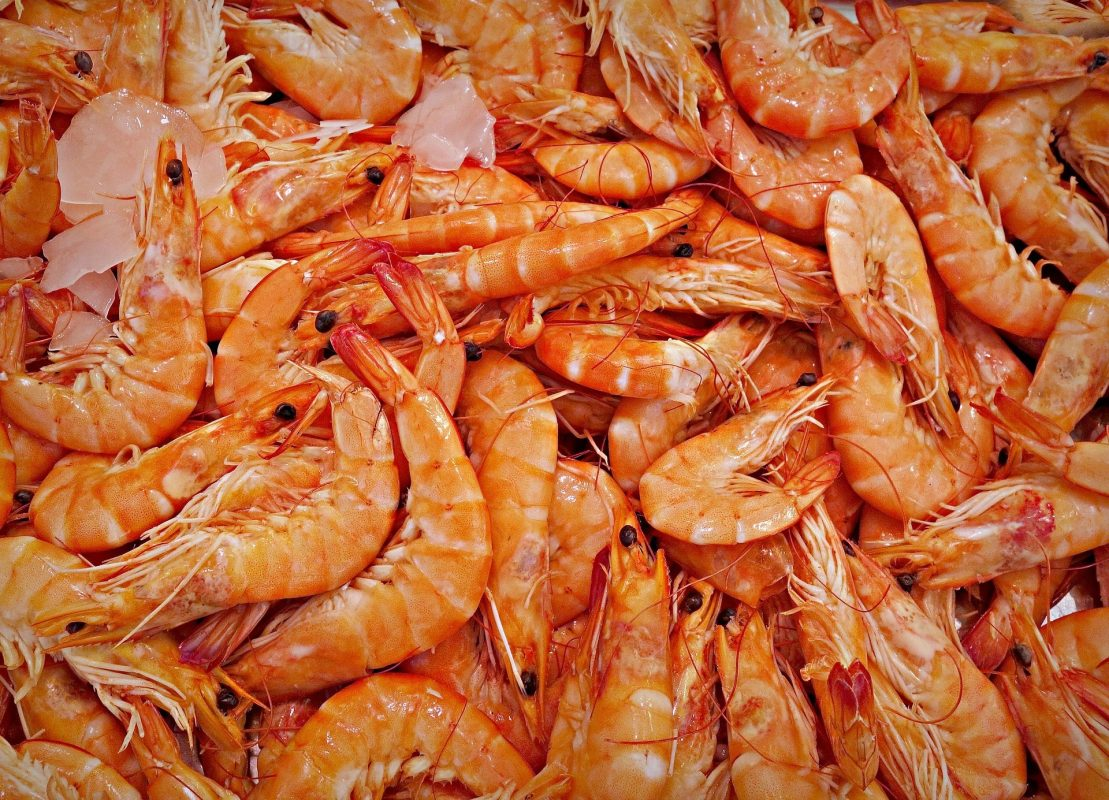 The Dirty Business with the Shrimps