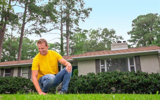 Spring awakening: 5 expert tips to renew your lawn