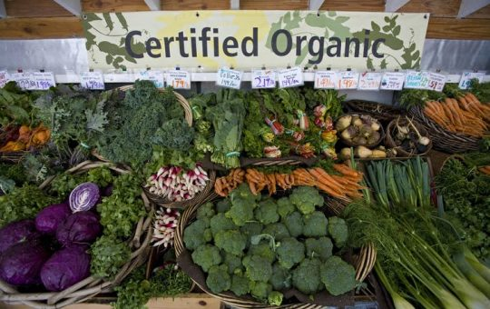 Organic food has become mainstream but still has room togrow