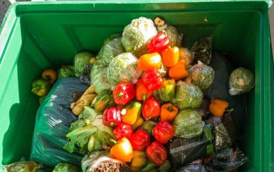 We throw away a third of the food we grow